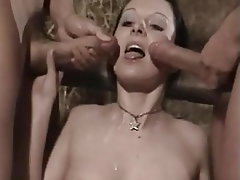 Blowjob, Brunette, Group Sex, Facial, Cum in mouth